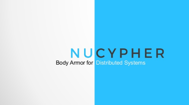 Body Armor for Distributed System