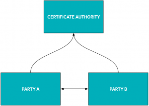 mTLS setup | Certificate authority